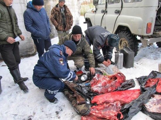 Руководитель Госкомохоты Тувы рассказал о браконьерах, наказанных судом