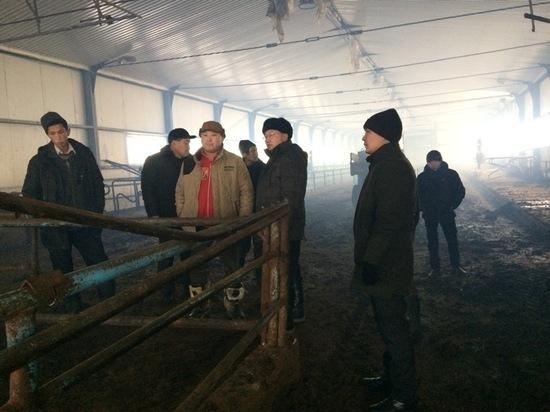В одном из тувинских сел молочная ферма выбирается из проблем